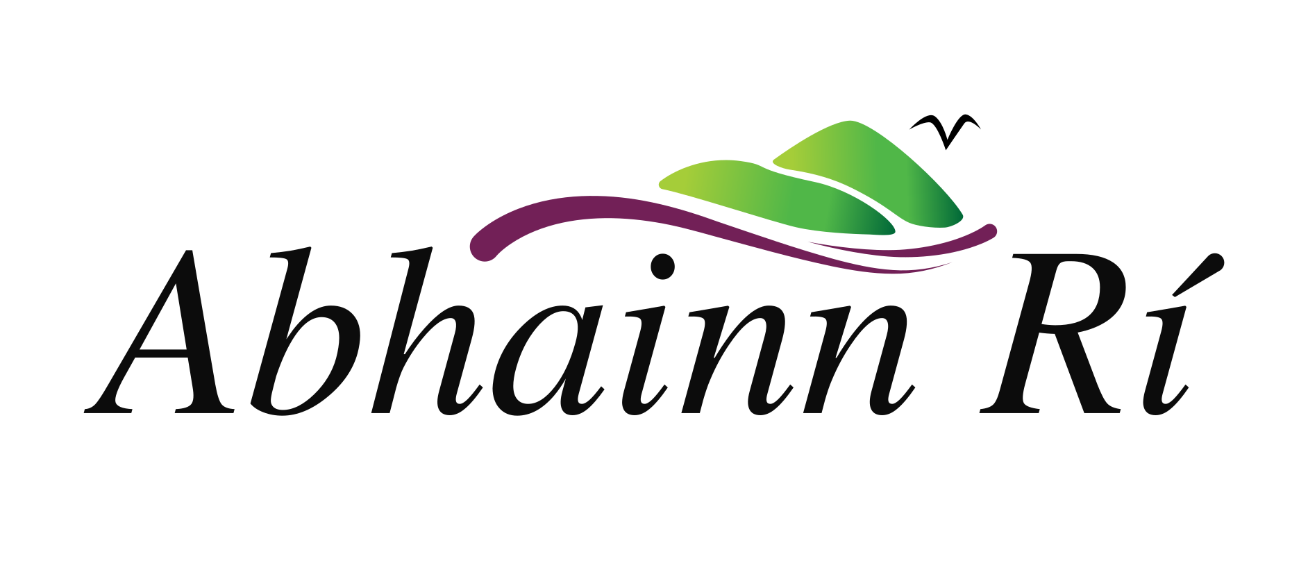Abhainn Rí Bed & Breakfast Logo
