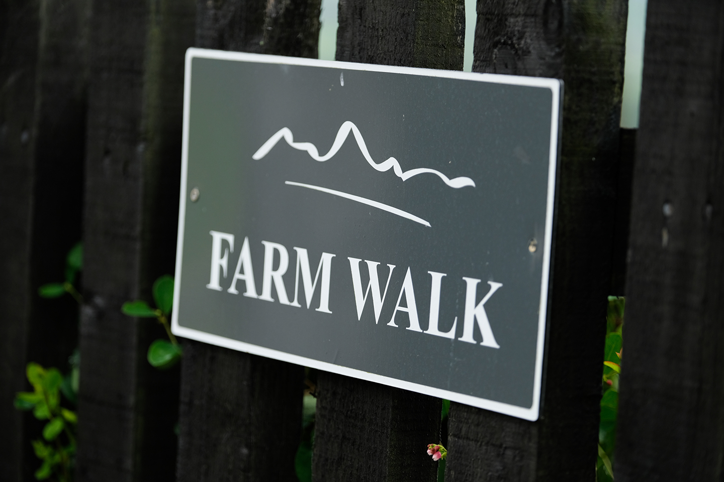 Farm Walk Sign