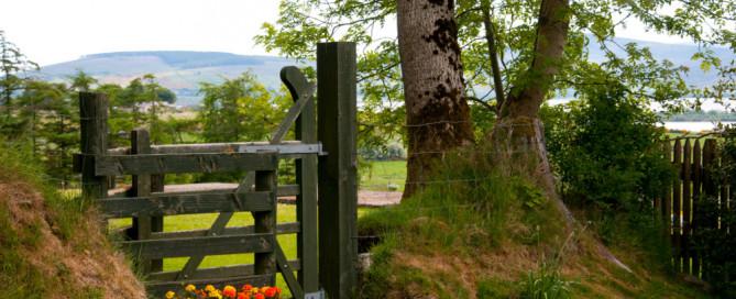 Green gate into farm