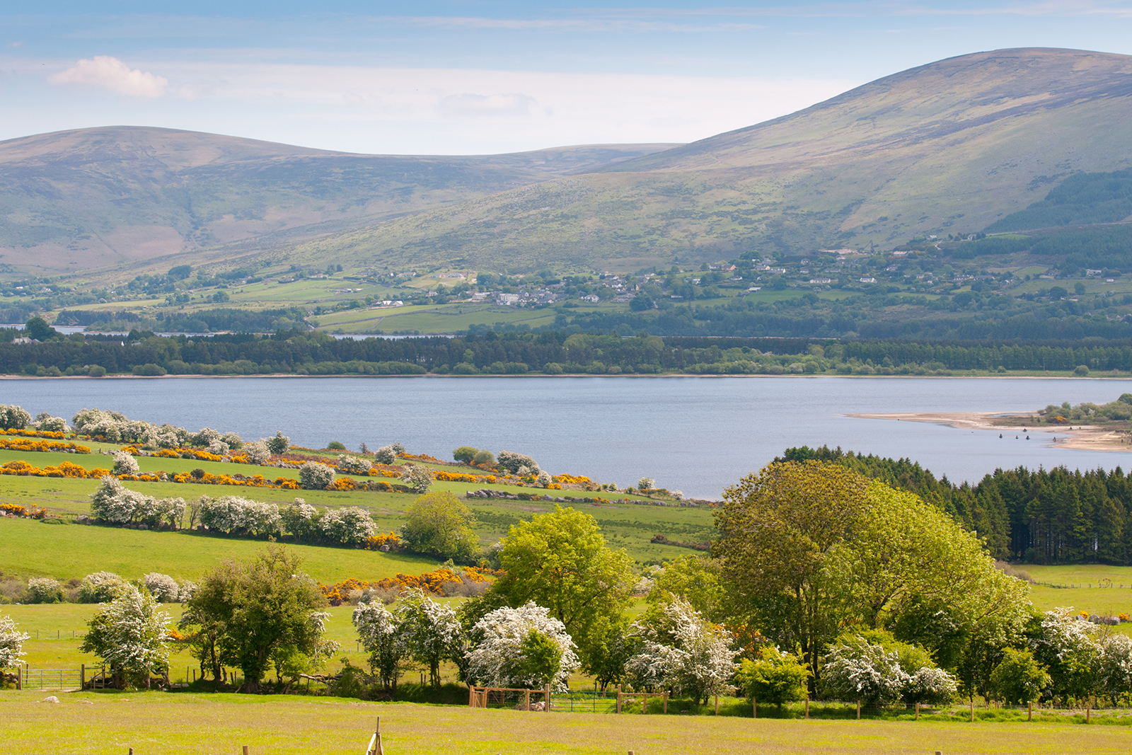 Wicklow mountains overlooking Blessington lakes