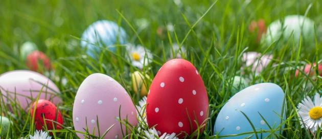 Easter-egg-hunt-at-abhainn-Ri