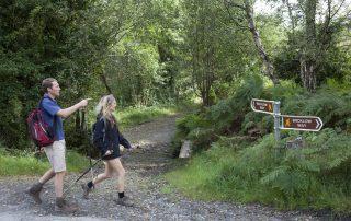 Walking the Wicklow Way
